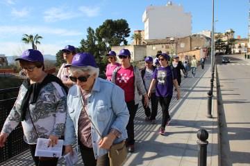 caminata solidaria 2017-10