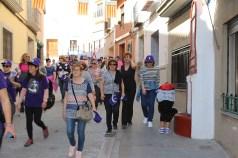 caminata solidaria 2017-26