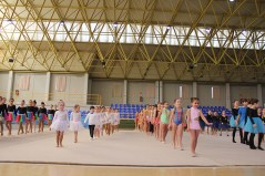 gimnasia (5)
