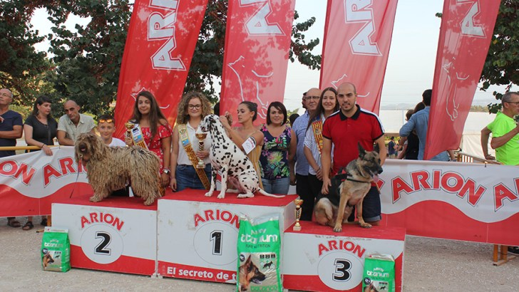 Las imágenes del Concurso de Perros Templaus de la Feria y Fiestas de Buñol