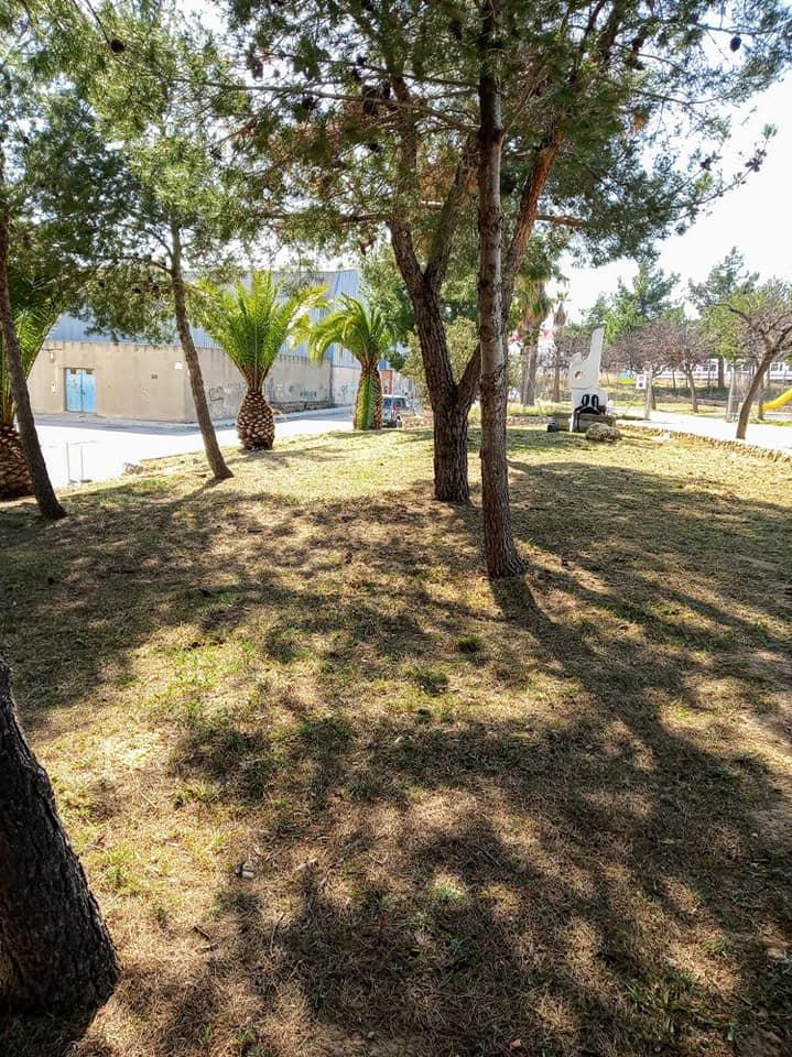 Silvicultura Parque Fina Luján Buñol