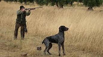 Anécdotas de caza