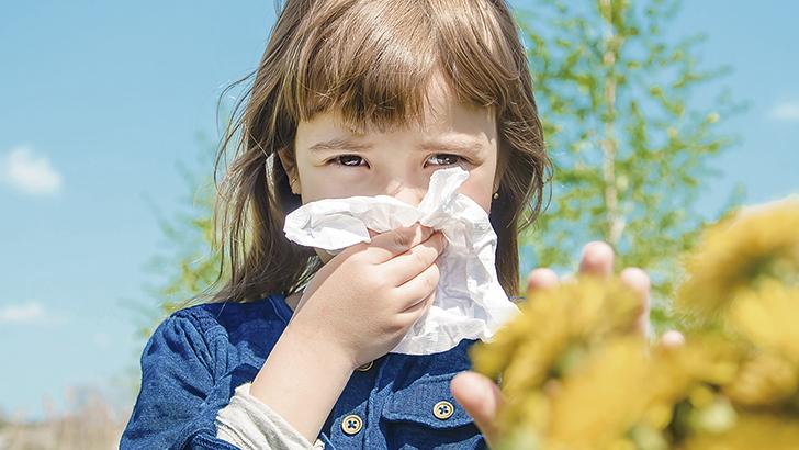 Alergia. Un problema todo el año.