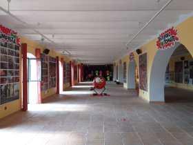 museo tomatina 2021-4