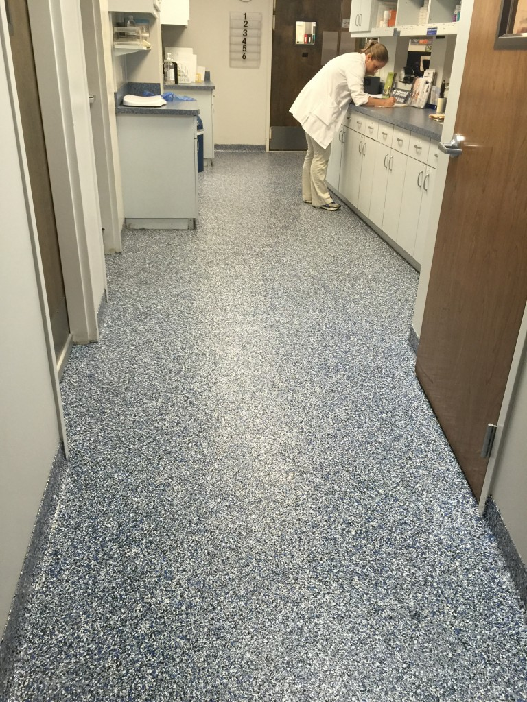 Kennels  Animal Hospitals Flooring  SealKrete High