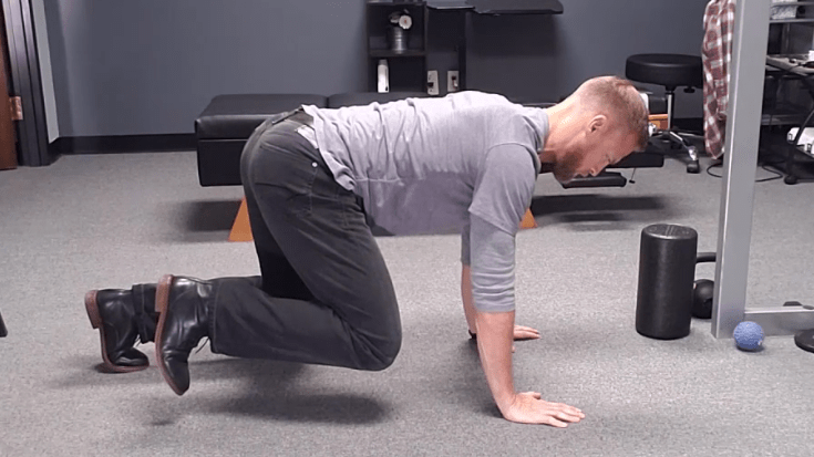 The beast crawl leg pull exercise allows you to use your psoas correctly and protect your low back in the process