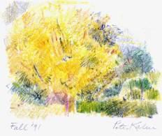 Fall (1991)