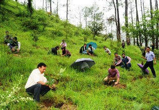 This website also highlights the initiatives taken by revenue and forest department in. Home Himachal Pradesh Forest Department