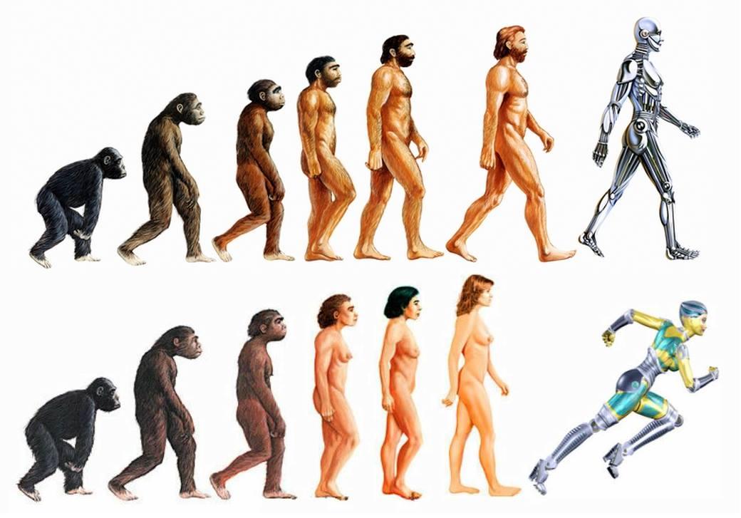 Image of posthumanist evolution.