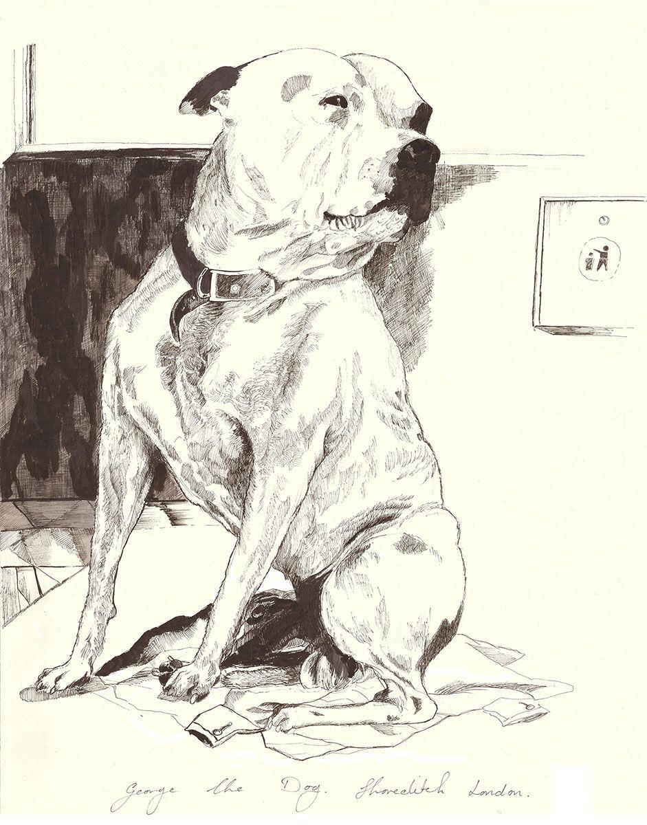 john dolan george the dog