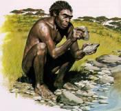 Homo Habilis σμιλεύει πέτρινα εργαλεία.
