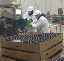 Loading Juice Bottles in HPP baskets at the High Pressure Processing Machine