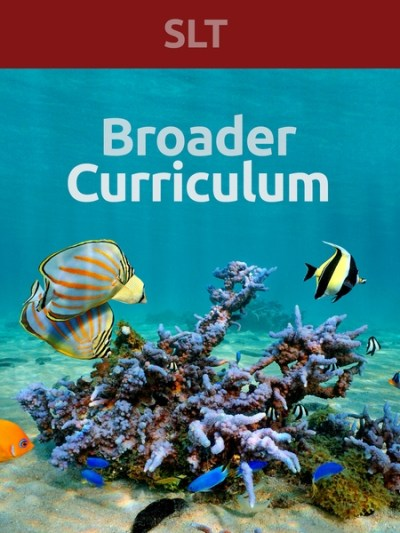 broad_curric_slt-450x600