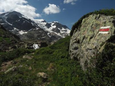 Wanderparadies Nähe Steigletscher