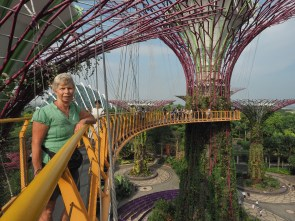 Gardens by the Bay: Super Tree Grove Skyway III