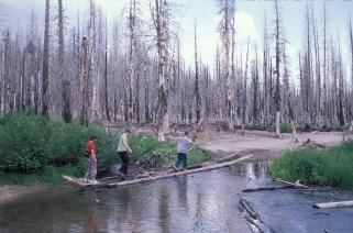 USA Westen 084 07 1998