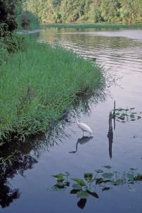 Florida 2000 30