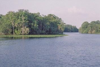 Florida 2000 31