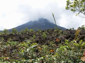 Costa Rica 2009