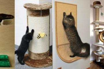 когтеточки для кішки