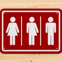 Engendering Transgenderism In The Modern Workplace