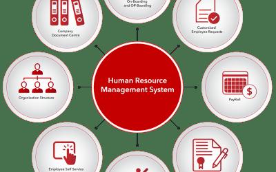 Why a Human Resource Management System Make Good Business Sense