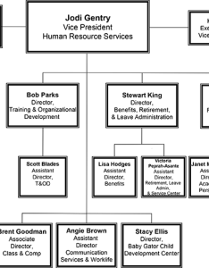 Graphic of organizational hierarchy also ufhr organization chart uf human resources rh hr ufl
