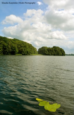 The Peninsula and Island III