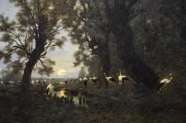 'A Gathering of Storks'