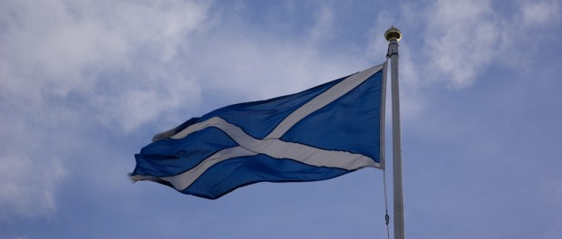 A saltire flag against a blue and cloudy sky