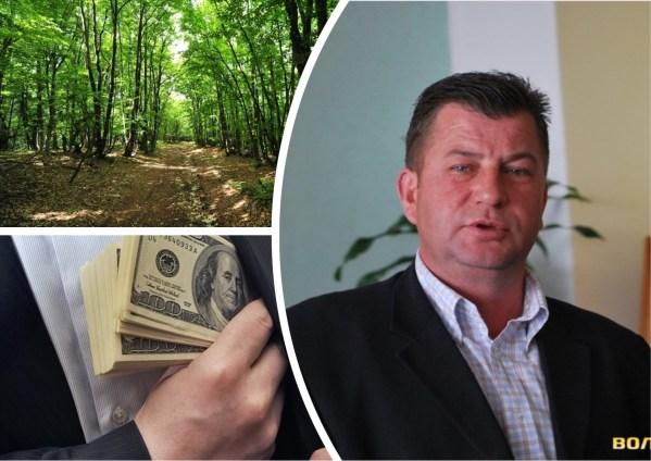 Кадрова криза: державне лісопідприємство вдруге очолив директор, якого судили за хабар