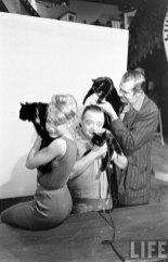 Кастинг чёрных котов (15)
