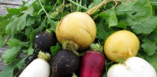 Диетологи рассказали, какие овощи защищают женщин от воспалений