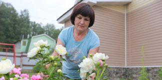Выявлено влияние садоводства на психическое здоровье человека