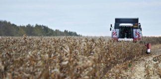 В Минагрополитики спрогнозировали урожай зерновых