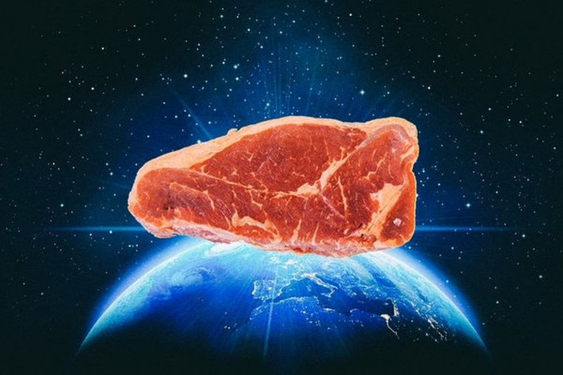 Scientists Grow Cow Cells Into 'Real' Steak on International Space Station