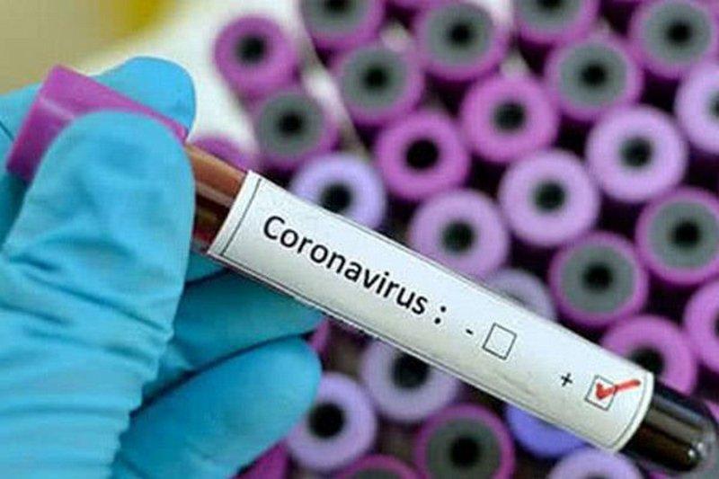 Названы продукты, помогающие организму сопротивляться коронавирусу