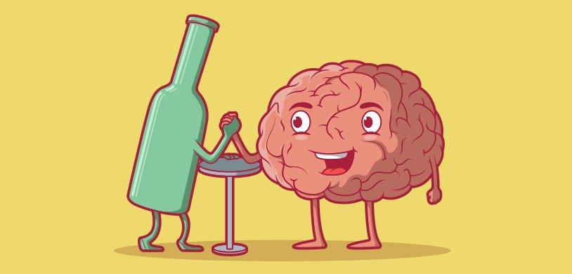 Ученые выяснили, сколько времени требуется на восстановление мозга после употребления алкоголя