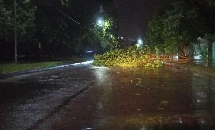 На Львовщину обрушился ураган: двое погибших
