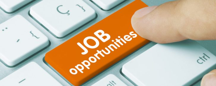 employment figures reach record high