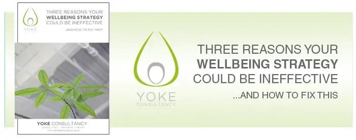 Yoke Consultancy