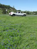 Photo by H.S. Cooper © Chevy with TX Bluebonnets (TX)