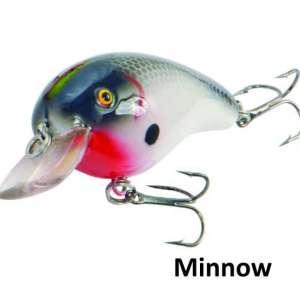Predox-little Joe minnow