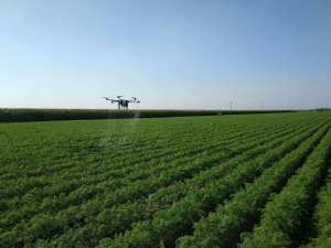 sprayer drone demo