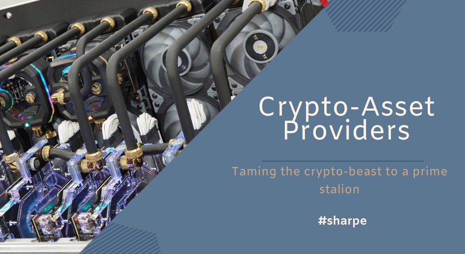 What is Cyprus Crypto-Asset Provider?