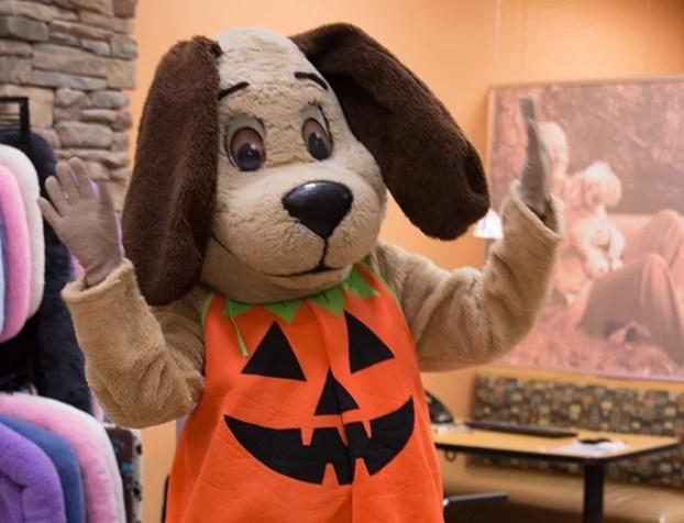 Happy the Hound HSHV mascot in Halloween costume