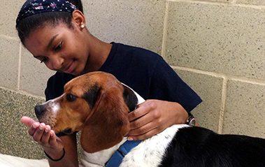 junior volunteer with dog