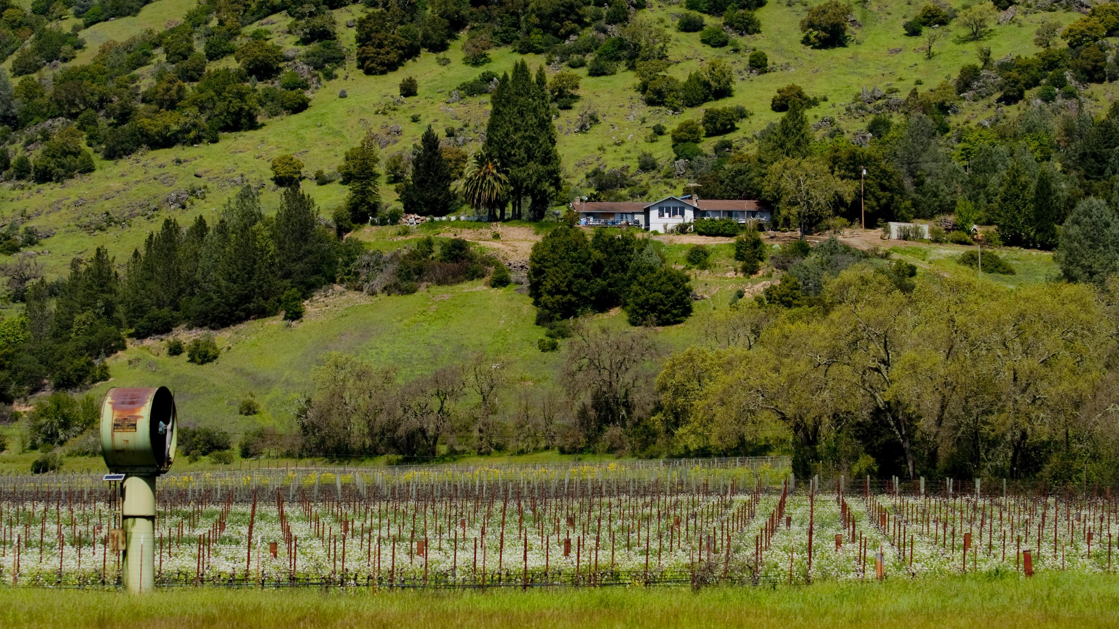 加州酒莊 (Napa Valley and Central Coast)   美西夢幻海岸及國家公園之旅