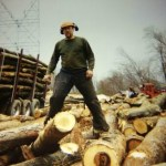 Hahn Memorial Foundation Logging Pennsylvania Families