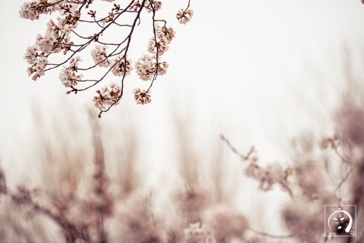 2019.04.02 診間速寫 (纖瘦的美女瑜伽老師)